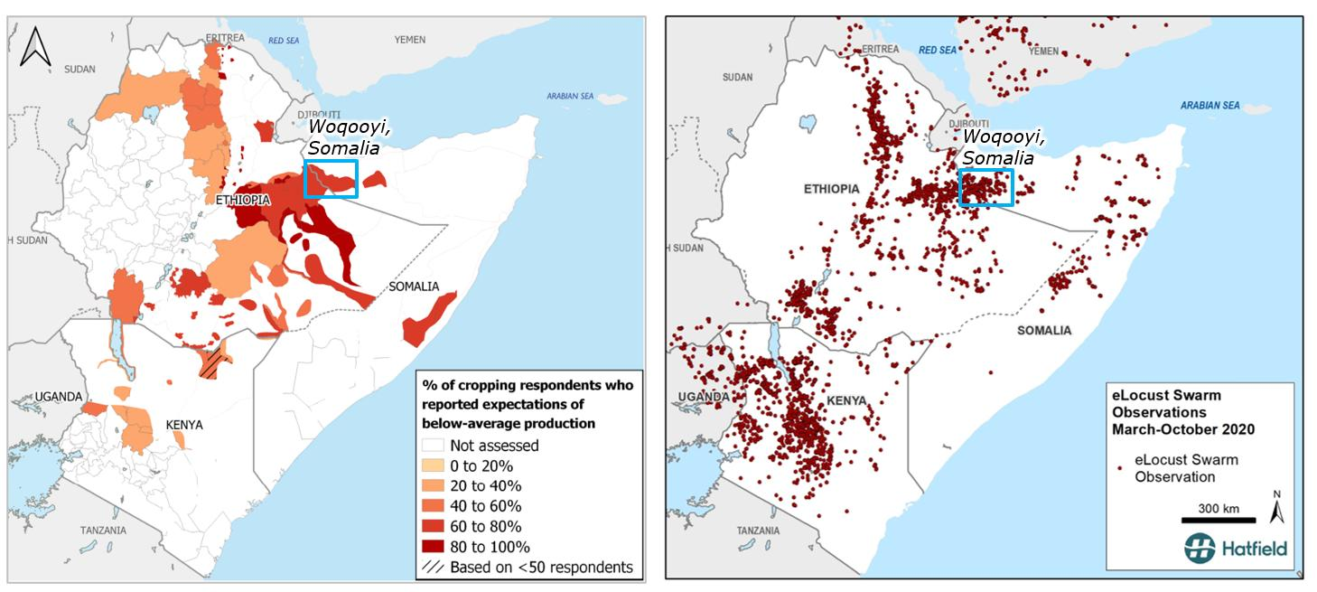 Data source: a) Desert locust impact assessment survey, Food Security and Nutrition Working Group (FAO) b) eLocust3 data, FAO, c) Waterbodies, Natural Earth 2019, d) Administrative boundaries, ESRI.