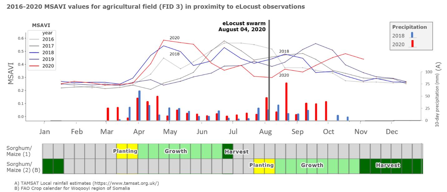 2016-2020 MSAVI values for agricultural fields (FID 3) in proximity of eLocust observations