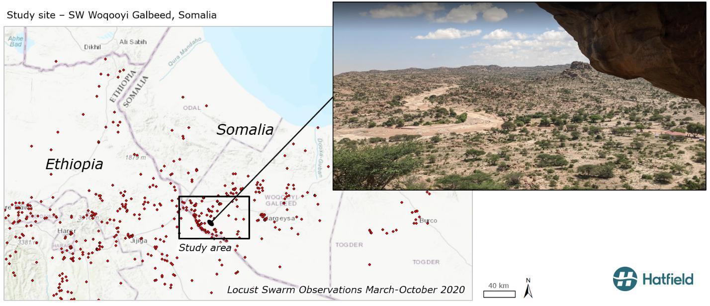 Data source: a) eLocust3 data, FAO, b) Administrative boundaries, ESRI World Topographic Map. c) Site photo, Google Maps, 2019.